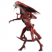 Figura Action ALIEN Regina Rossa RED QUEEN NECA Aliens Genocide