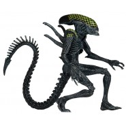 Action Figure 23cm GRID ALIEN from AvP Alien Versus Predator SERIE 7 Neca 9''