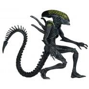 Figura Action 23cm GRID ALIEN da AvP Alien Versus Predator SERIE 7 Neca