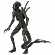 Action Figure 23cm WARRIOR ALIEN from AvP Alien Versus Predator SERIE 7 Neca 9''
