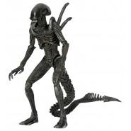 Figura Action 23cm WARRIOR ALIEN da AvP Alien Versus Predator SERIE 7 Neca