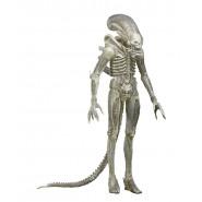 Figura Action 23cm XENOMORPH ALIEN Translucent Suit CONCEPT Figure SERIE 7 Neca