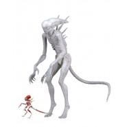 Figura Action 18cm NEOMORPH Alien da ALIEN COVENANT 2017 Serie 1 Neca