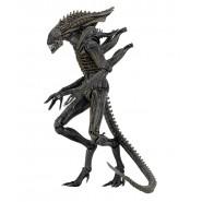 Figura Action 23cm XENOMORPH Aliens DEFIANCE da ALIENS Alien SERIE 11 Neca