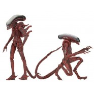 BIG CHAP and DOG ALIEN Box 2 Action Figures 20cm From ALIENS Alien GENOCIDE Original NECA