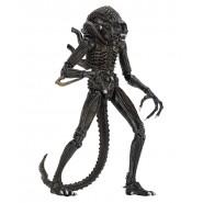 ALIENS Alien Action Figure ULTIMATE EDITION WARRIOR CASE 23cm MARRONE Da Collezione Originale Ufficiale NECA