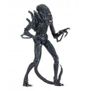 ALIENS Alien Action Figure ULTIMATE EDITION WARRIOR CASE 23cm BLU Blue Da Collezione Originale Ufficiale NECA