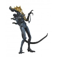 ALIENS Action Figure XENOMORPH WARRIOR Battle Damaged 18cm BLUE Collection Original Official NECA