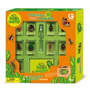 Top Price BOX Collection 10 REAL BUGS with Magnigier and Guide GEOWORLD